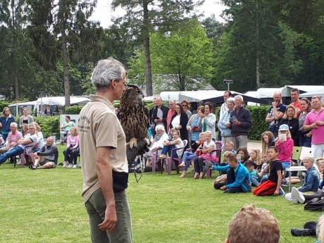 Roofvogelshow - 2019 (5).jpg