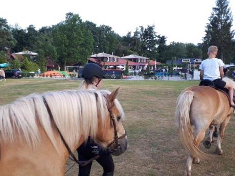 Ponyrijden.jpg