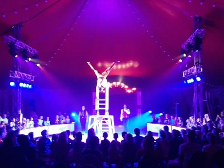 Circus 2021 (6).jpg